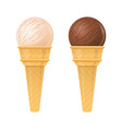 ice cream vanilla and chocolate isolated vector image vector image
