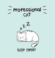 kawaii cat in with lettering professional cat vector image vector image