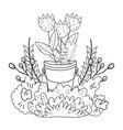metal bucket with flowers garden vector image