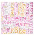 Minerals The Precious Elements of Your Body text vector image vector image