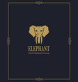 abstract elephant icon vector image