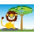 Animal lion in savannah vector image vector image