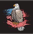 eagle american flag vector image vector image