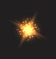 light effect glow star flashed sequins vector image