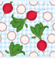 seamless pattern radish with green top vector image vector image