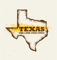 texas the lone star usa state creative vector image vector image