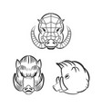 angry boars with fangs isolated on white vector image vector image