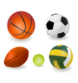 big set of sport balls vector image vector image