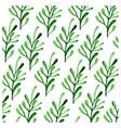 botanicals pattern herbs leaf background im vector image vector image
