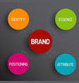 brand concept schema diagram vector image vector image