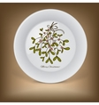 Christmas decorative plate with mistletoe vector image