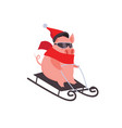 funny and cute cartoon pig on a slide winter vector image vector image