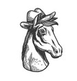 horse in cowboy hat engraving vector image