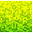 Abstract green and yellow background vector image vector image
