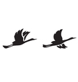 black silhouettes of flying birds vector image vector image