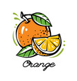 bright orange with leaves in outline vector image vector image
