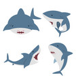 cute flat white shark set vector image vector image