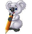 Cute koala holding pencil isolated vector image vector image