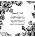 Hand drawn pattern with various seashells and vector image