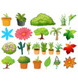 large set different plants on white background vector image vector image
