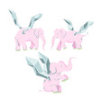 pink elephant with wings isolated on white vector image