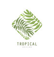 tropical logo design geometric badge with palm vector image vector image