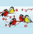 cartoon birds tits and bullfinches on branch rowan vector image