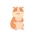 cute hamster on white vector image vector image