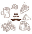 hand drawn cocoa beans cocoa pod chocolate cake vector image vector image