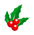 holly berry ornament detail vector image vector image