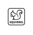 icon of squirrel vector image vector image