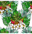 tropical leaves and exotic flowers on background vector image vector image