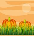 agriculture plantation vegetable pumpkin vector image vector image