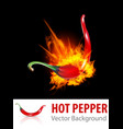 Burning chili pepper vector | Price: 1 Credit (USD $1)