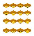 faces in sombrero vector image vector image