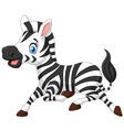 Happy baby zebra running vector image vector image