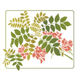leaves with red flowers vector image