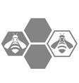 logo of bee vector image vector image
