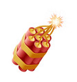 petard tnt burning cord dynamite bomb explosive vector image vector image
