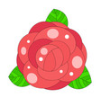 rose bud print for t-shirt vector image