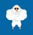 sheep strong cool serious ewe smoking cigar emoji vector image vector image