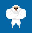 sheep strong cool serious ewe smoking cigar emoji vector image