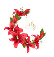 wedding invitation with red lily flowers vector image vector image