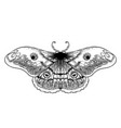 black and white decorative of vector image vector image