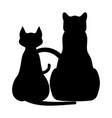 black cat 0003 vector image