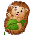 cartoon hedgehog with holding leaf and waving hand vector image