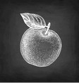chalk sketch apple