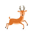 cute deer cartoon on white vector image vector image