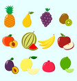 fruits a set of icons vector image vector image