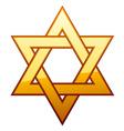 golden David star vector image vector image